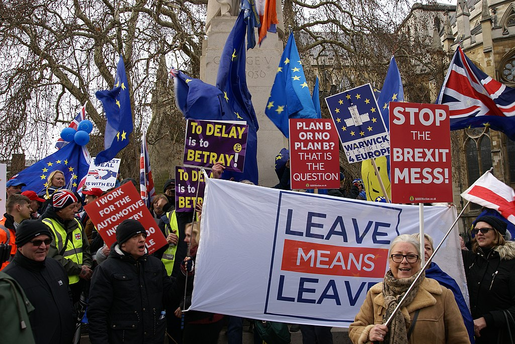 Brexit Demonstrators